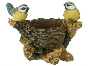 Blomkruka Fåglar - örebro - Blomkruka Fåglar - örebro