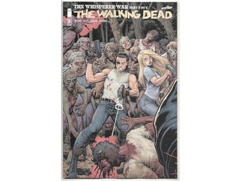 Walking Dead # 161 Cover B NM Ny Import