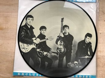 BEATLES THE - SILVER BEATLES LP PICTUREDISC