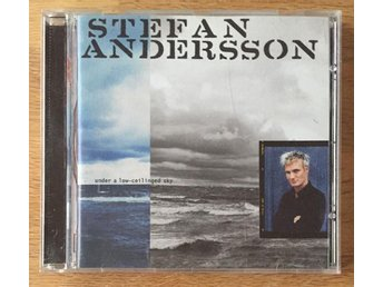 "Stefan Andersson ""Under a low-ceilinged sky"""