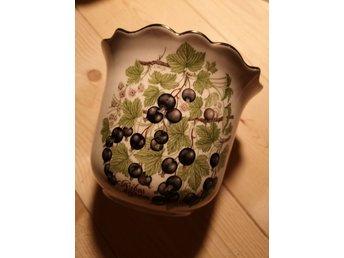 svarta vinbär säljes