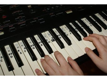 Piano Keyboard Music Note Stickers (for all types) Transparent C-D-E-F-G-A-H.