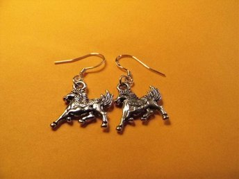Häst örhängen / horse earrings