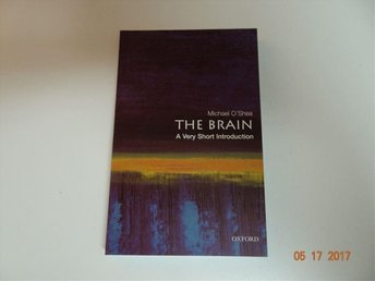 Bok : The brain a very short introduction