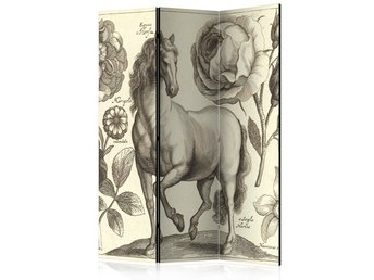Rumsavdelare - Horse Room Dividers 135x172