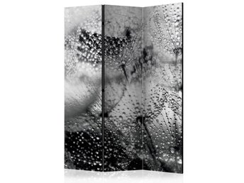 Rumsavdelare - Kiss of the Rain Room Dividers 135x172