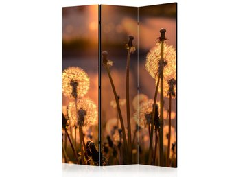 Rumsavdelare - Farewell to Summer Room Dividers 135x172