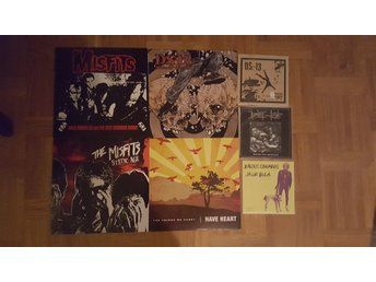 DS-13, Misfits, Have Heart, The Clash, Nirvana, Rise Against mfl LP stor samling