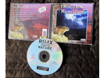 Relax With the sounds of Thundering Rainstorm