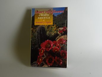 Desert wildflowers of North America