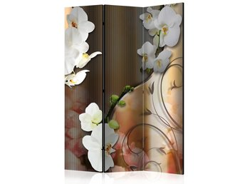Rumsavdelare - Orchid Room Dividers 135x172
