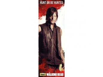 The Walking Dead Dörraffisch Daryl 315