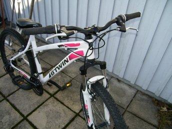 Eldriven Trehjuling Elcykel med Serveringsskåp