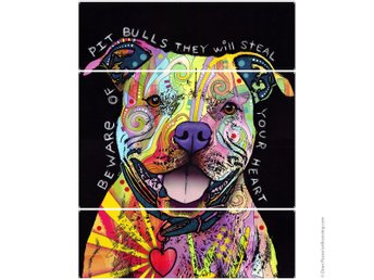Beware Rainbow Pit Bull Dog Dean Russo Triptych Metal Wall Art And Design