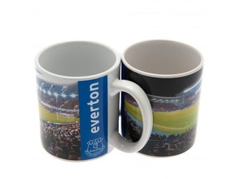 Everton Mugg Stadium