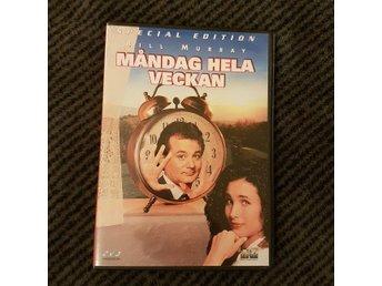 Måndag Hela Veckan - Groundhog Day - Special Edition - 1993 - Bill Murray - Motala - Måndag Hela Veckan - Groundhog Day - Special Edition - 1993 - Bill Murray - Motala