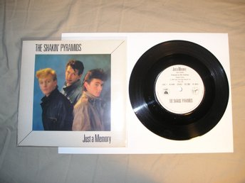 The Shakin' Pyramids – Just A Memory, 7""
