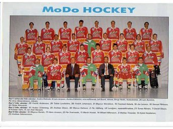 Mo Do Hockey, lagbild 1995