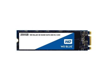 WD BLUE 3D NAND M.2 SSD 250GB (2280) -5 year warranty-