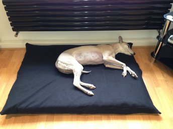 Spare Covers For Our Cheap Economy Budget Dog Beds Range