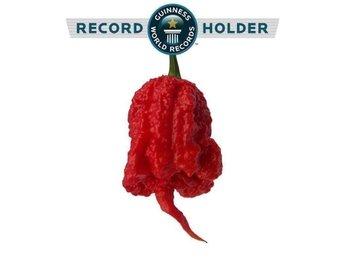 Carolina Reaper Världens starkaste chili frön 100st - Halmstad - Carolina Reaper Världens starkaste chili frön 100st - Halmstad