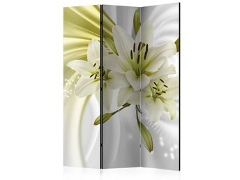Rumsavdelare - Green Captivation Room Dividers 135x172