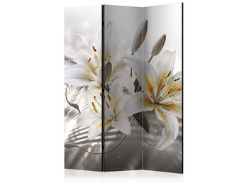 Rumsavdelare - Crystalline Beauty Room Dividers 135x172