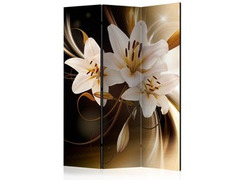 Rumsavdelare - Circle of Light Room Dividers 135x172