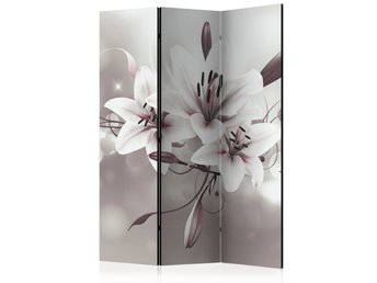 Rumsavdelare - Favourite of Kings Room Dividers 135x172