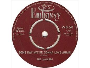 Ray Pilgrim And The Beatmen / The Jaybirds ‎– Kissin' Cousins / Some Day We're G