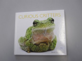 Curious critters - David Fitzsimmons