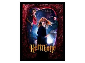 Harry Potter Inramad Bild Hermione