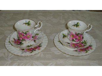 Prairie Rose Royal Albert  2st Kaffekoppar med assietter