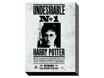 Harry Potter Canvastryck Undesirable No.1