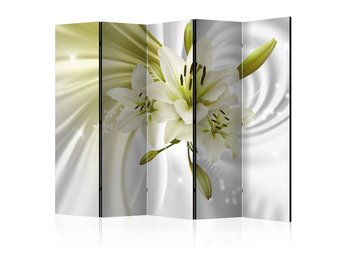 Rumsavdelare - Green Captivation II Room Dividers 225x172