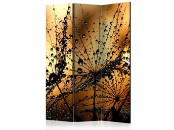 Rumsavdelare - Dandelions in the Rain Room Dividers 135x172