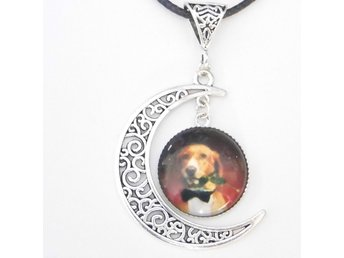 Hund måne halsband / Dog moon necklace