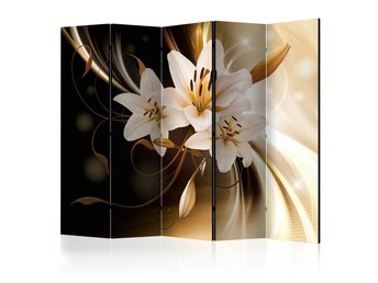 Rumsavdelare - Circle of Light II Room Dividers 225x172