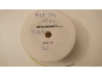 Guideline Powertaper F/S1  DH 8/9