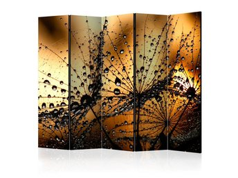 Rumsavdelare - Dandelions in the Rain II Room Dividers 225x1