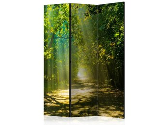 Rumsavdelare - Road in Sunlight Room Dividers 135x172