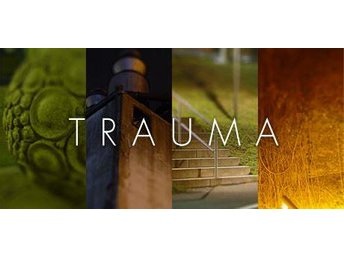 Trauma Steam CD Key