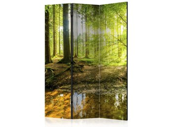 Rumsavdelare - Forest Lake Room Dividers 135x172