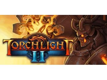 Torchlight II 2 PC Steam Kod Ny