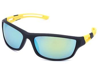 ᐈ Köp Solglasögon herr på Tradera • 642 annonser 58267388176dc