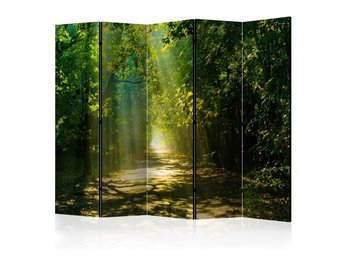 Rumsavdelare - Road in Sunlight II Room Dividers 225x172