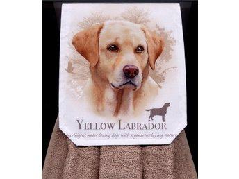 Välsydd spishandduk. Fin labrador hund. - Grytgöl - Välsydd spishandduk. Fin labrador hund. - Grytgöl