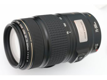 Canon EF 75-300mm 1:4-5.6 IS USM 75-300