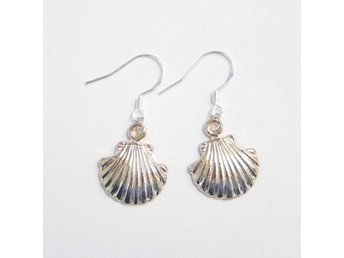 Snäckskal örhängen / Seashell earrings