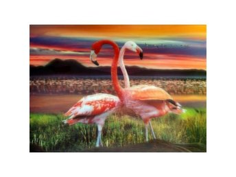 Stort Artwork High Def 3D Pic - Flamingos